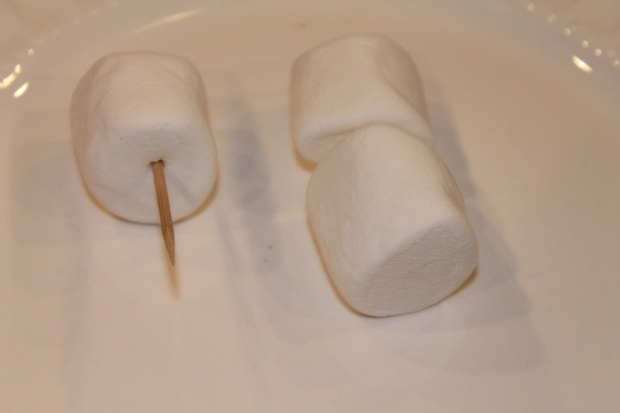 marshmallows on a toothpick
